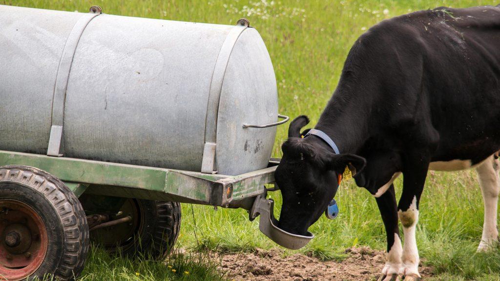 un-mes-para-solicitar-ayudas-que-garanticen-el-suministro-de agua-a-las-explotaciones-agrarias-1920