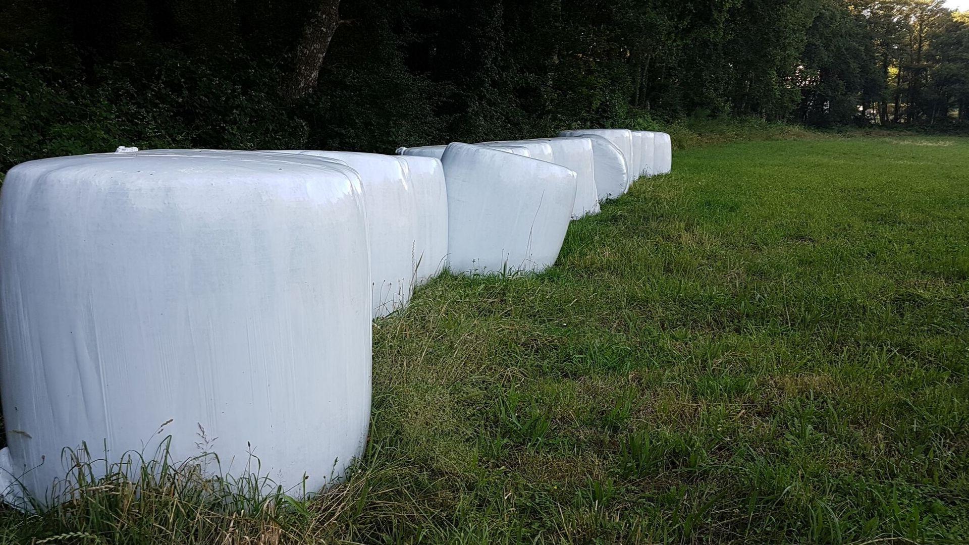 comienza-la-recogida-de-plasticos-de-silo-lalin-1920